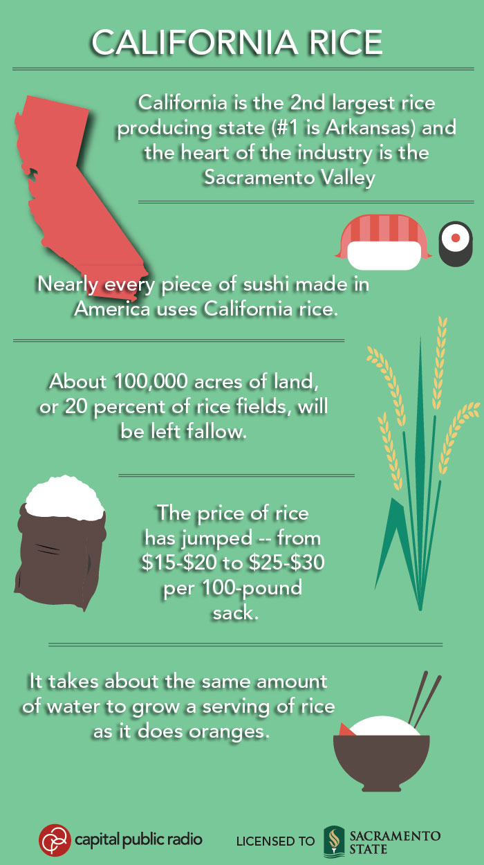 0429-california -rice -info -8