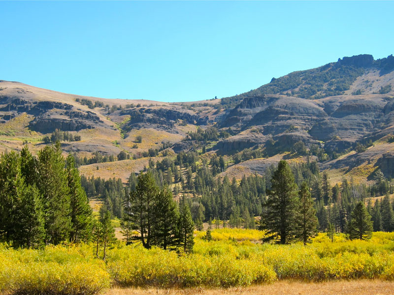 the endangered ecosystem of lake tahoe basin Ecosystem brief overview the ecosystem of the lake tahoe basin has been dramatically altered since european settlers began to settle around the lake in the middle of the last century.