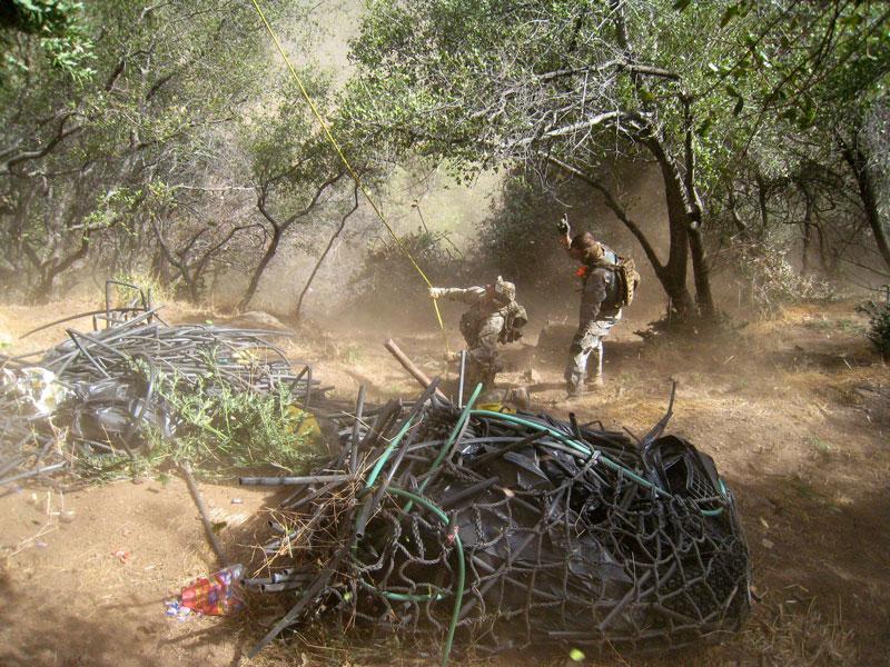 Wildlife Officials Clean Up Illegal Marijuana Grow Sites - capradio org