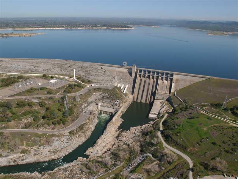 Study 181 california dams key for fish survival for Nimbus dam fishing