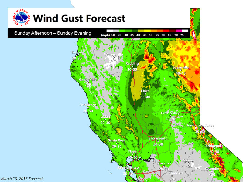 031016 STORM - Wind Updated PeakWindGusts_Sun.jpg