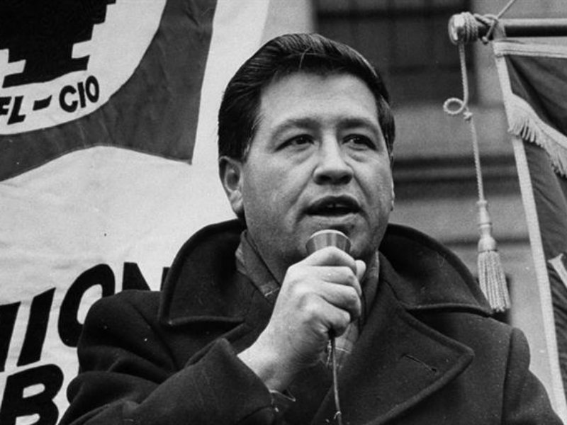 account of the life of cesar chavez My account cesar chavez length: cesar chavez in his early life cesar experienced a lot of injustices and saw how not only his parents.