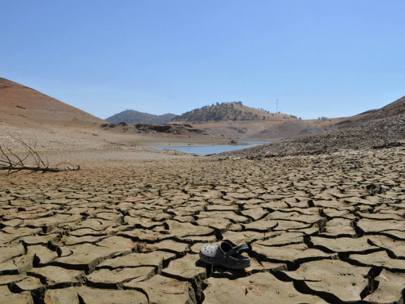 an examination of the drought in california 10102017  california is in an awful catch-22 drought situation sign in sign up how the end of the drought likely exacerbated the deadly california wildfires how.