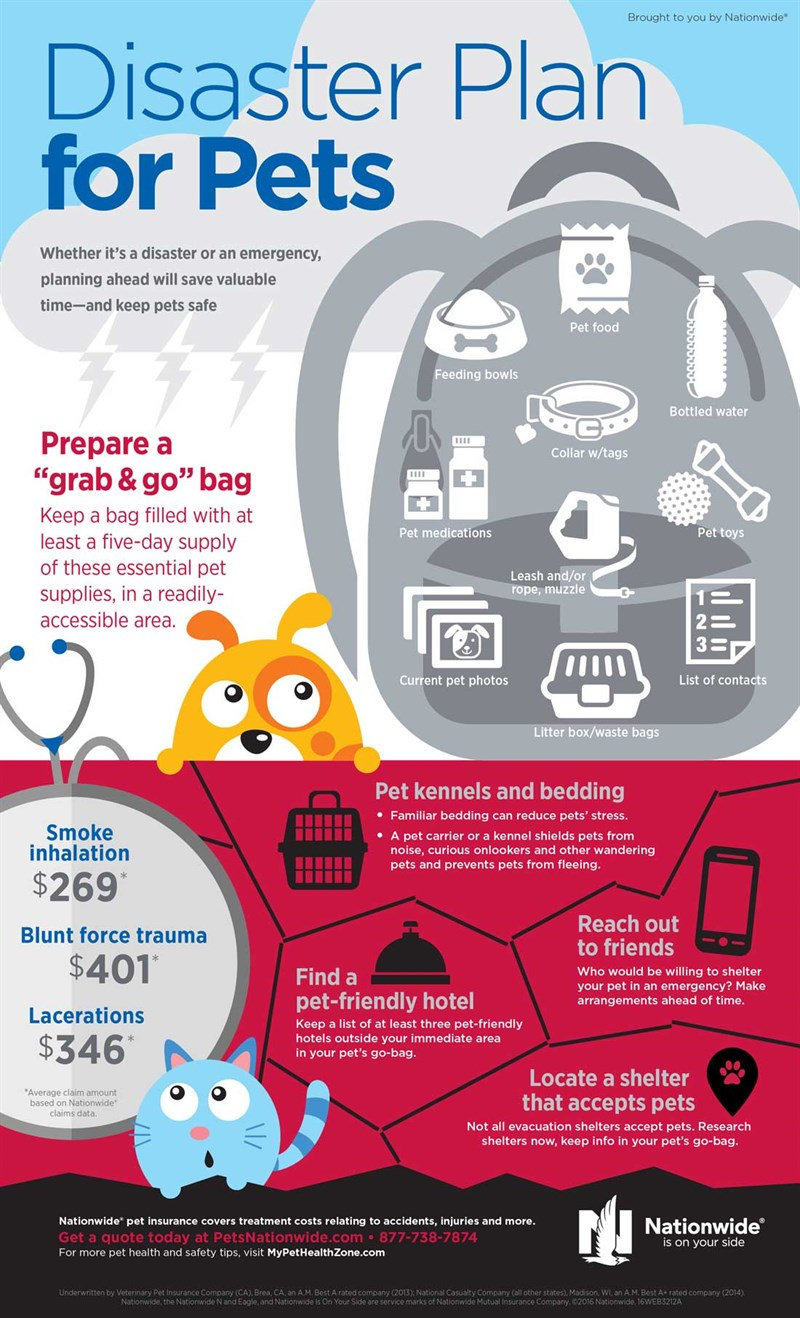 Pet -Disaster -Prep -Infographic -2016