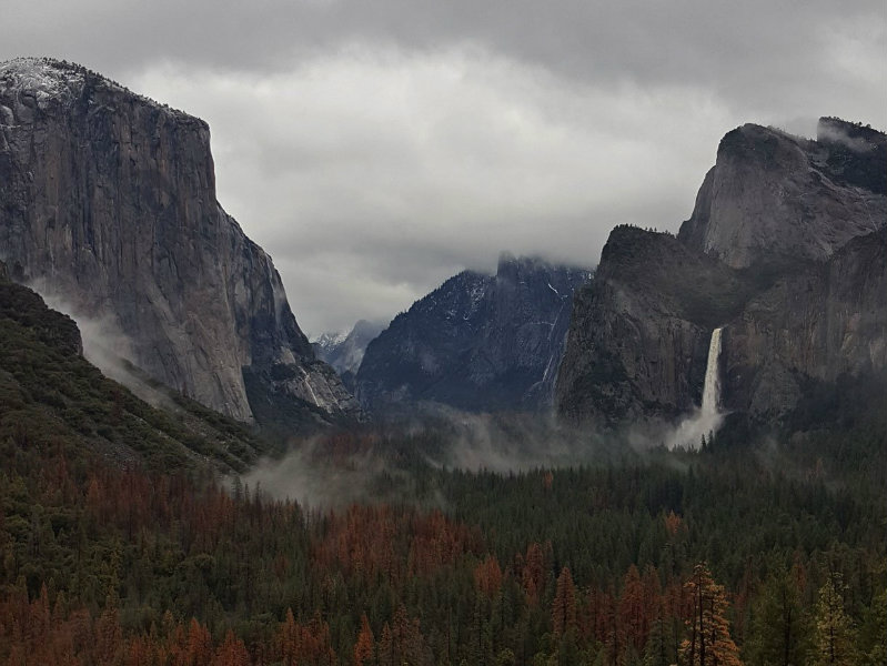 Yosemite National Park / Twitter